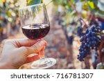 wine tasting  degustation  hand ... | Shutterstock . vector #716781307