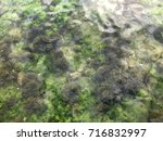 sea  background   Shutterstock . vector #716832997