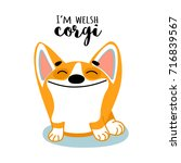cute dog of welsh corgi. vector ... | Shutterstock .eps vector #716839567