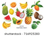 tropical fruits set. vector... | Shutterstock .eps vector #716925283