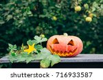 autumn helloween pumpkin | Shutterstock . vector #716933587