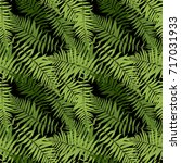 fern leaf vector fern leaf... | Shutterstock .eps vector #717031933