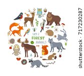 vector set of forest animals... | Shutterstock .eps vector #717230287
