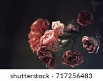 Roses With A Dark Background
