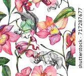 wildflower orchid flower... | Shutterstock . vector #717287677