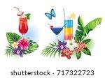 tropical summer arrangements...   Shutterstock .eps vector #717322723
