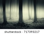 dark forest mysterious... | Shutterstock . vector #717393217