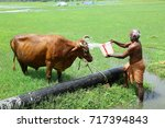 madurai   tamilnadu  south... | Shutterstock . vector #717394843