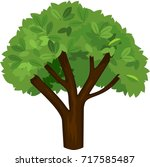 summer tree with green foliage... | Shutterstock .eps vector #717585487