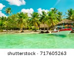 amazing exotic full of high... | Shutterstock . vector #717605263