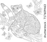 coloring page of madagascar... | Shutterstock .eps vector #717609463