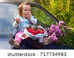 harvesting apples and pink... | Shutterstock . vector #717734983