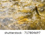 trout fishing in the mountain... | Shutterstock . vector #717804697