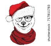 akita inu in santa claus hat... | Shutterstock .eps vector #717811783