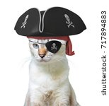 funny animal costume of a cat... | Shutterstock . vector #717894883