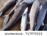 shark without fins on sale... | Shutterstock . vector #717975523