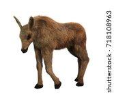 3d Rendering Of A Moose Calf...