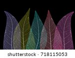 dry leaf detail texture   Shutterstock . vector #718115053
