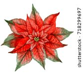 watercolor christmas poinsettia.... | Shutterstock . vector #718299697