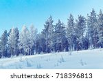 snowy trees in the countryside  ... | Shutterstock . vector #718396813