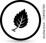 leaf icons. vector. eps 10 | Shutterstock .eps vector #718456783