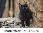 Black Cat Near The Red Brick...
