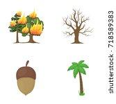 burning tree  palm  acorn  dry... | Shutterstock .eps vector #718589383
