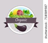 whole ripe vegetable purple... | Shutterstock .eps vector #718589587