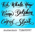 dolphin and shark  hand written ... | Shutterstock .eps vector #718695997