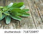 Salvia Officinalis. Sage Leave...