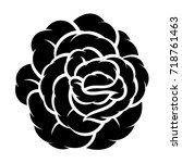 flower rose  black and white.... | Shutterstock .eps vector #718761463
