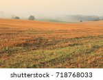 Mighty Misty Autumn Field View