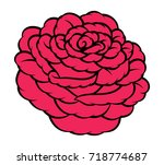 red rose isolated on white... | Shutterstock .eps vector #718774687