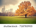 central park at rainy day  new... | Shutterstock . vector #718783903