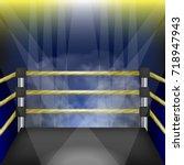 vector professional empty... | Shutterstock .eps vector #718947943