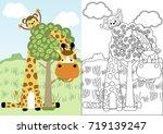 giraffe and monkey playing peek ... | Shutterstock .eps vector #719139247