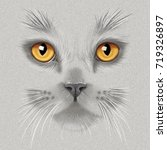 Stock photo hand drawing portrait of a a gray british cat with yellow eyes on a gray background 719326897