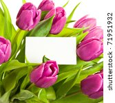 a bunch of pink tulips with... | Shutterstock . vector #71951932