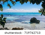 view looking out from the trees ... | Shutterstock . vector #719762713