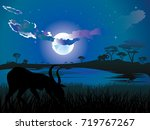 colorful night scene  african... | Shutterstock .eps vector #719767267