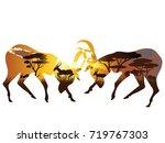 colorful sunset scene  african... | Shutterstock .eps vector #719767303