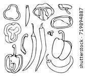 pepper illustration. vegetable... | Shutterstock . vector #719894887