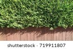 hedge and fence background | Shutterstock . vector #719911807