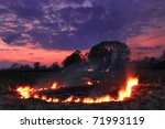 Spring Fires In A Field At...