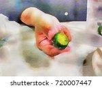 small lemon or singapore lime... | Shutterstock . vector #720007447