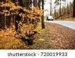 wet rainy autumn day. leaves... | Shutterstock . vector #720019933