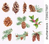 Christmas Watercolor Elements