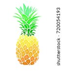 pinapple fruit summer abstract... | Shutterstock .eps vector #720054193