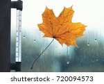 Autumn Weather  Thermometer ...