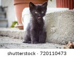 Stock photo little black kitten 720110473